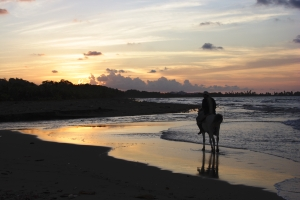 horseback by sunset