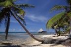 "Pristine ""Green"" Panamanian Paradise"